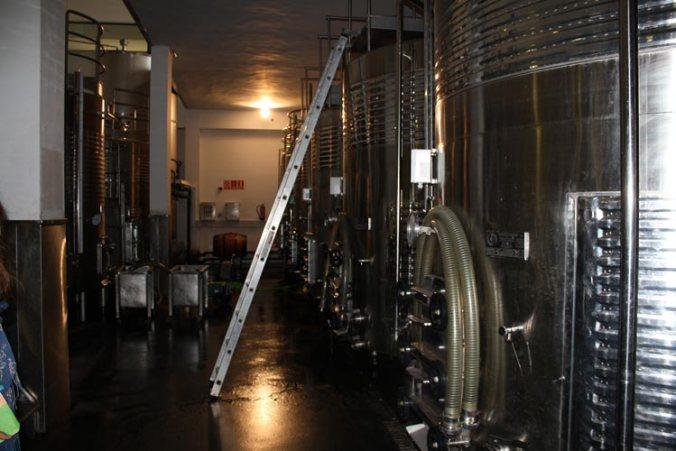 Depósitos de fermentacion de los vinos