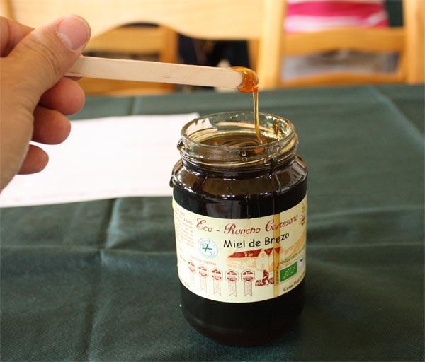 Miel de Brezo del Museo de la Miel y las Abejas de Jerez